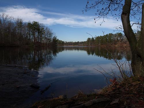 "Lake off ""Dog Island"""